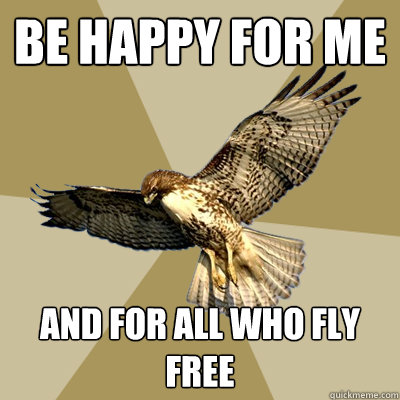 Be Happy for me And for all who fly free  serious bird boy