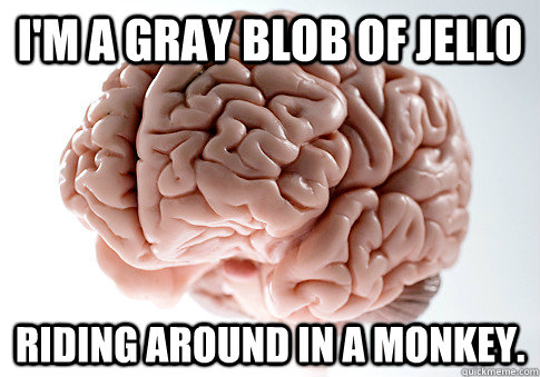 I'm a gray blob of jello Riding around in a monkey. - I'm a gray blob of jello Riding around in a monkey.  Scumbag Brain