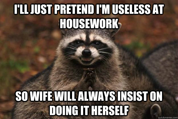 i'll just pretend i'm useless at housework so wife will always insist on doing it herself - i'll just pretend i'm useless at housework so wife will always insist on doing it herself  Evil Plotting Raccoon