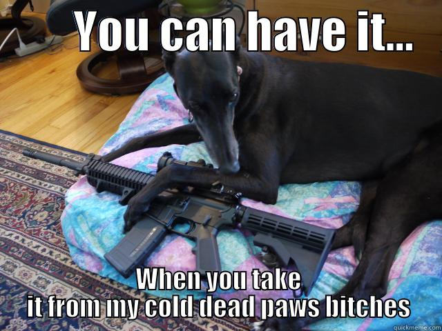 YOU CAN HAVE IT...    WHEN YOU TAKE IT FROM MY COLD DEAD PAWS BITCHES Misc