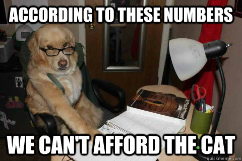 According to these numbers we can't afford the cat - According to these numbers we can't afford the cat  Financial Advice Dog