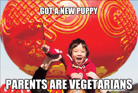 got a new puppy parents are vegetarians  Second World Success