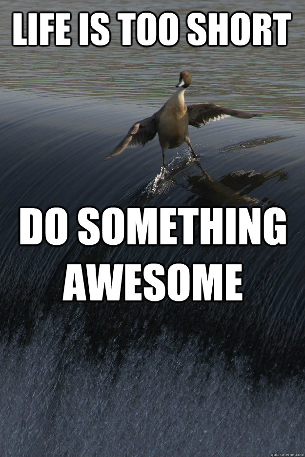 Life is too short do something awesome - Life is too short do something awesome  Misc