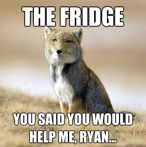 the fridge you said you would help me, ryan...
