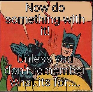 NOW DO SOMETHING WITH IT! UNLESS YOU DON'T REMEMBER WHAT ITS FOR.... Slappin Batman