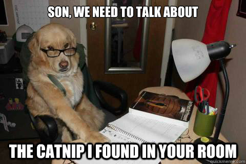 Son, we need to talk about The catnip I found in your room