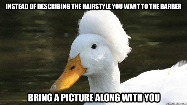 0fe8d49be16a13568261108186b94bd5b03f1a262ff4992e9b0dead439b41e4f fabulous hair duck memes quickmeme,Duck Meme