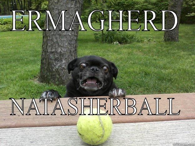 ERMAGHERD NATASHERBALL Berks Dog