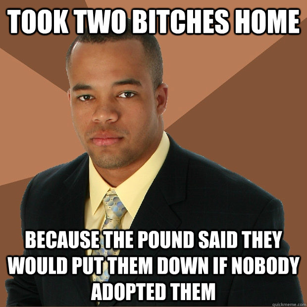 Took two bitches home because the pound said they would put them down if nobody adopted them - Took two bitches home because the pound said they would put them down if nobody adopted them  Successful Black Man