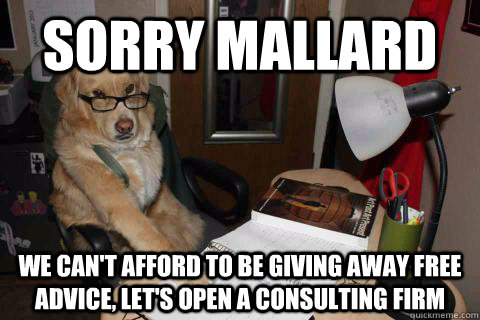 sorry mallard we can't afford to be giving away free advice, let's open a consulting firm - sorry mallard we can't afford to be giving away free advice, let's open a consulting firm  Misc