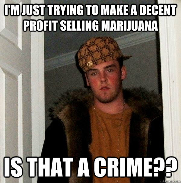 I'm just trying to make a decent profit selling marijuana Is that a crime?? - I'm just trying to make a decent profit selling marijuana Is that a crime??  Scumbag Steve