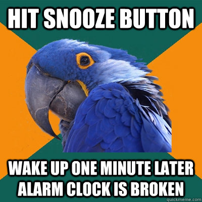 HIT SNOOZE BUTTON wake up one minute later alarm clock is broken - HIT SNOOZE BUTTON wake up one minute later alarm clock is broken  Paranoid Parrot