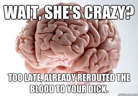 Wait, she's crazy? Too late, already rerouted the blood to your dick. - Wait, she's crazy? Too late, already rerouted the blood to your dick.  Scumbag Brain