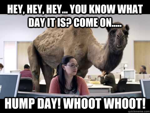 Hey, hey, hey... you know what day it is? Come on..... Hump day! Whoot Whoot!