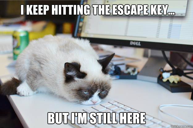 i KEEP HITTING THE ESCAPE KEY... BUT I'M STILL HERE  -  i KEEP HITTING THE ESCAPE KEY... BUT I'M STILL HERE   Grumpy Cat Mouse