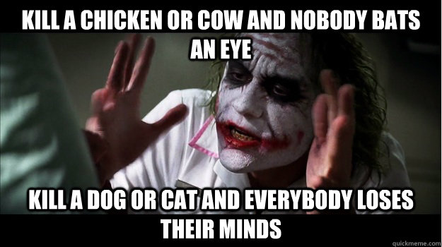 kill a chicken or cow and nobody bats an eye kill a dog or cat and everybody loses their minds - kill a chicken or cow and nobody bats an eye kill a dog or cat and everybody loses their minds  Joker Mind Loss