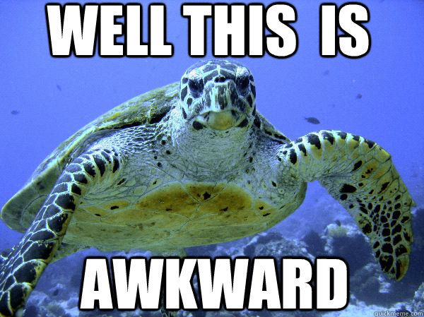 well This is AWKWARD - Awkward Turtle - quickmeme