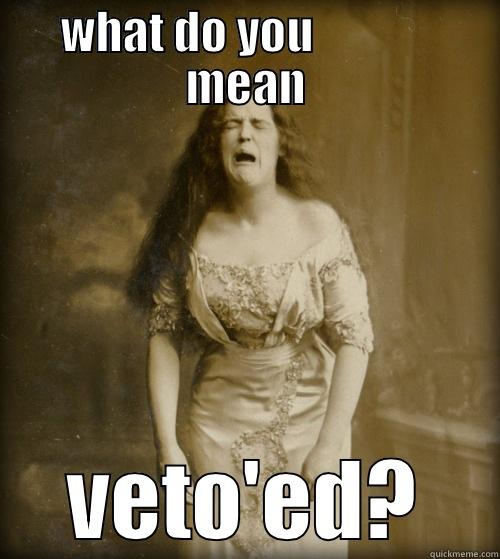 Housing problems - WHAT DO YOU              MEAN VETO'ED? 1890s Problems