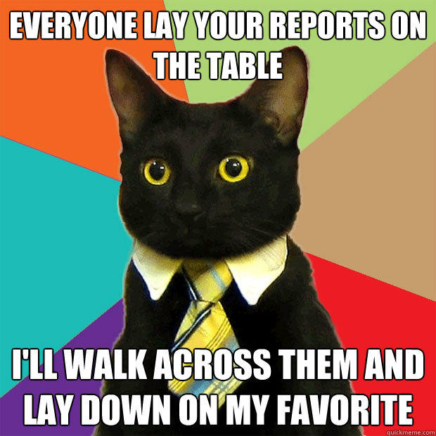 Everyone lay your reports on the table I'll walk across them and lay down on my favorite