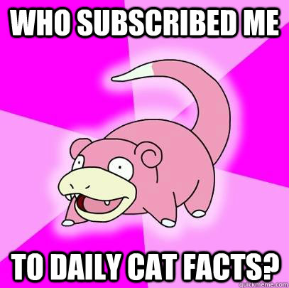 Who subscribed me to Daily Cat Facts? - Who subscribed me to Daily Cat Facts?  Slowpoke