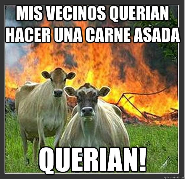 Mis vecinos querian hacer una carne asada querian! - Mis vecinos querian hacer una carne asada querian!  Evil cows
