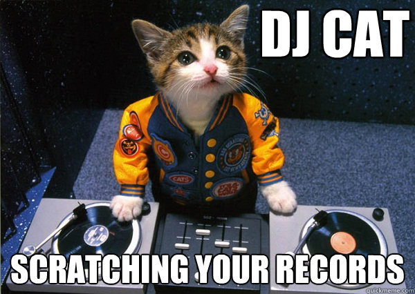 DJ CAT Scratching your records