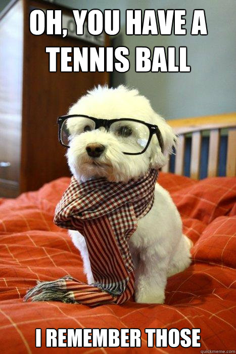Oh, you have a tennis ball I remember those  Hipster Dog