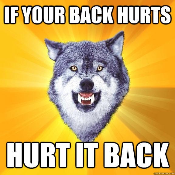 10e50b449e979b9ccb0d415e82302fe464d85ff212d324476572810cd24a385d if your back hurts hurt it back courage wolf quickmeme