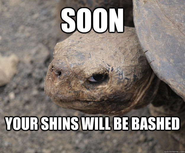 Soon Your shins will be bashed - Soon Your shins will be bashed  Angry Turtle