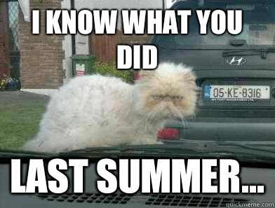 10ed78123ffc09fb2c2f058c6792af9740d32e94ab0b4558a661218ff35fd4c1 i know what you did last summer misc quickmeme