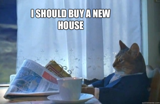 I should buy a new house - I should buy a new house  Sophisticated Cat