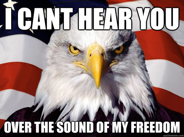 i cant hear you over the sound of my freedom