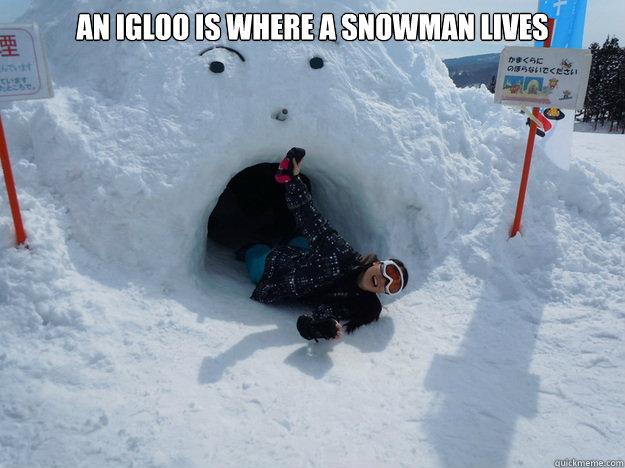 An igloo is where a snowman lives   Igloo