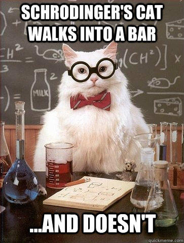 Schrodinger's Cat walks into a bar ...and doesn't - Schrodinger's Cat walks into a bar ...and doesn't  Chemistry Cat
