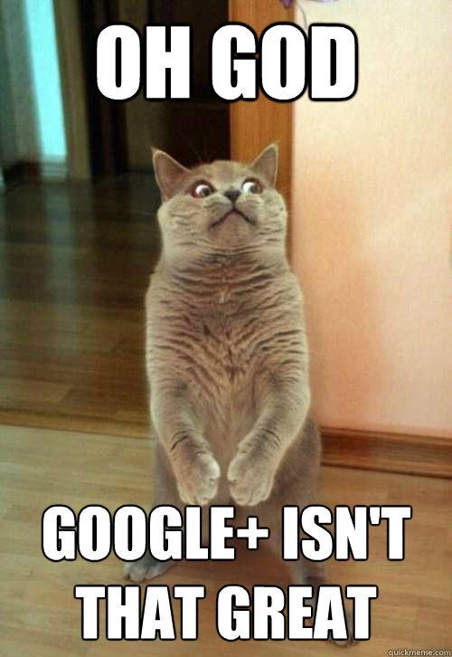 Oh god Google+ isn't that great  Horrorcat
