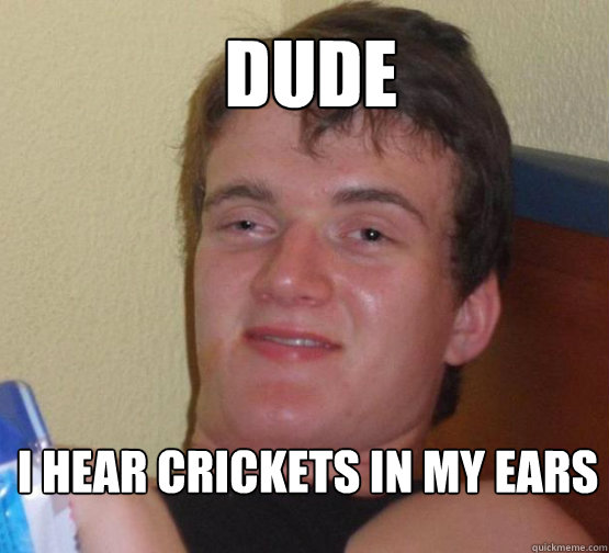DUDE   I hear crickets in my ears - DUDE   I hear crickets in my ears  Stoner Stanley