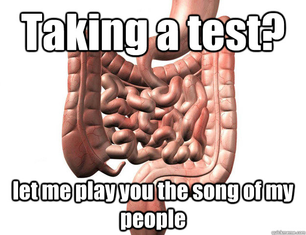 Taking a test? let me play you the song of my people