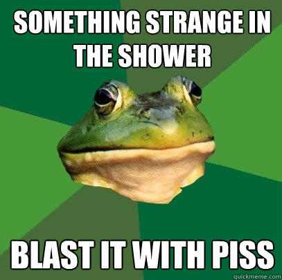Something strange in the shower blast it with piss - Something strange in the shower blast it with piss  Foul Bachelor Frog