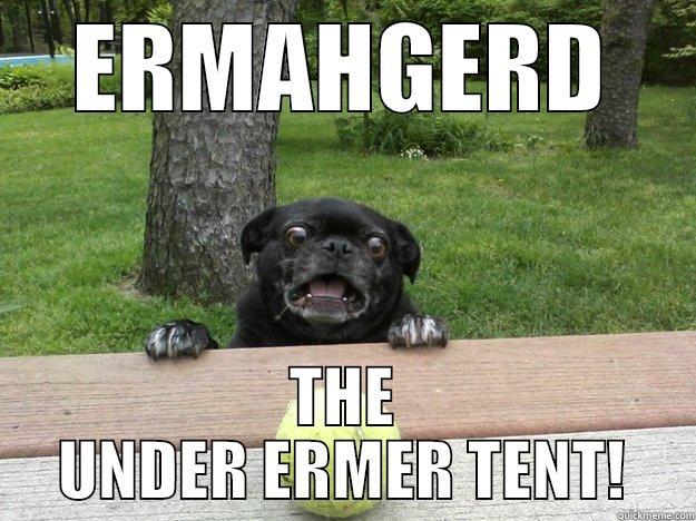 ERMAHGERD THE UNDER ERMER TENT! Berks Dog