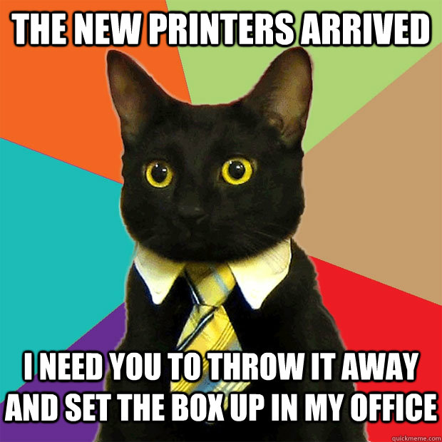 The new printers arrived  I need you to throw it away and set the box up in my office - The new printers arrived  I need you to throw it away and set the box up in my office  Business Cat