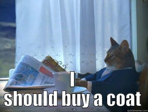 Its been kinda cold in Canada lately -  I SHOULD BUY A COAT The One Percent Cat