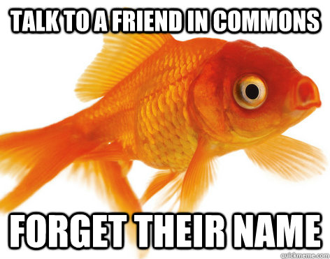 Talk to a friend in commons Forget their name