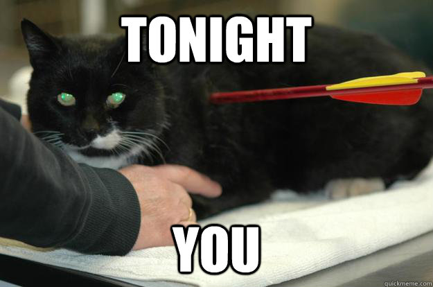tonight you  Worlds Toughest Cat