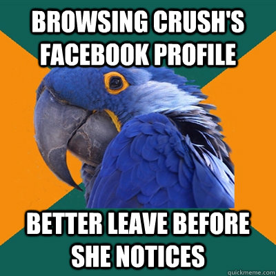 browsing crush's facebook profile better leave before she notices - browsing crush's facebook profile better leave before she notices  Paranoid Parrot