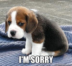 i'm sorry - So Sad Puppy - quickmeme Raccoon Eyes Makeup
