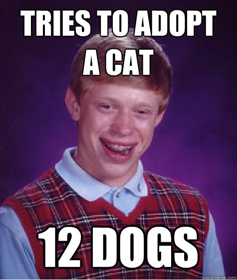 Tries to adopt  a cat 12 dogs - Tries to adopt  a cat 12 dogs  Badluckbrian