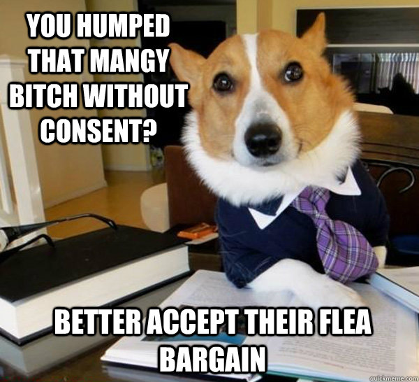 You humped that mangy bitch without consent? Better accept their flea bargain - You humped that mangy bitch without consent? Better accept their flea bargain  Lawyer Dog