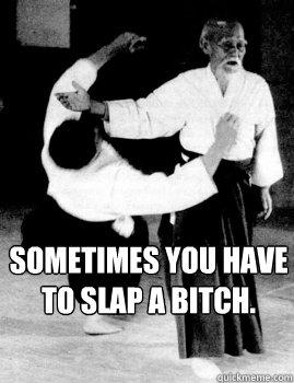 Sometimes you have to slap a bitch.  Aikido slap a bitch