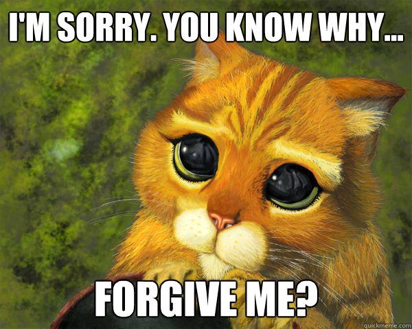 1215da664abc6c355953d3844d825f43216cb95e6d4c887d15c01ecb123b8a94 im sorry memes quickmeme,Im Sorry Meme