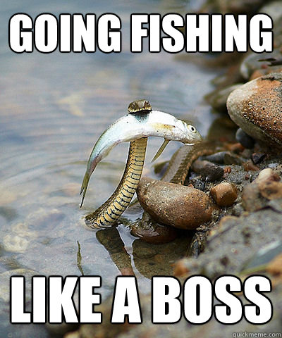 going fishing like a boss  Fishing Snake